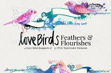 Love Birds Watercolors
