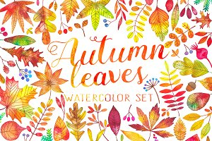 Watercolor autumn fall leaves