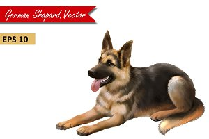 German Shepard dog laying. Vector