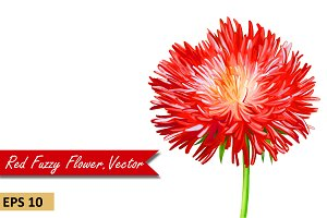 Red Thistle Aster Flower. Vector