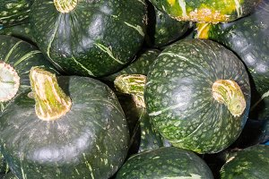 Winter buttercup squash