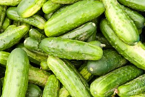 Fresh cucumbers or pickles