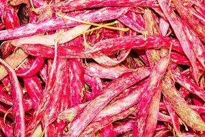 Roman or cranberry beans