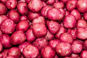 Bright red potatoes