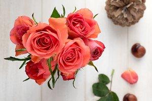 Roses, pinecones, chestnuts