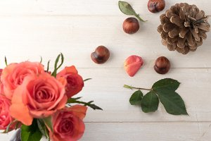 Roses, chestnuts, pinecone