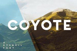 Coyote - crazy&retro font [Family]