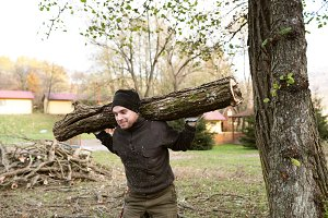 Man carrying tree trunk on his shoulders for heating in winter.