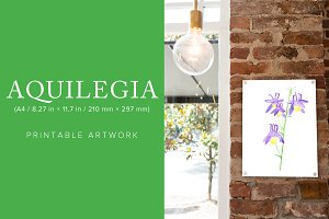 Aquilegia Printable Artwork