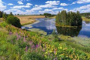 Summer Landscape in Latvia