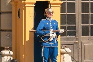 Guard at the post