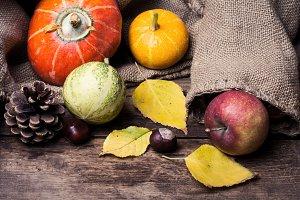Decorative Autumn Pumpkins