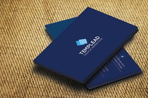 Corporate Business Card SE0300