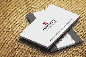 Corporate Business Card SE0304