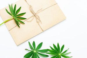 envelope with green leaves
