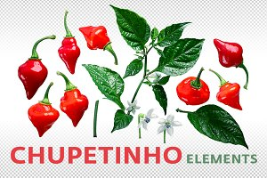Chupetinho elements