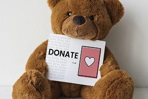 Bear doll with a donation card