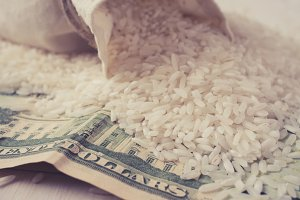 Rice and dollars