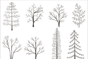 Illustration of trees