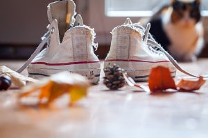 vintage sneakers autumn leaves