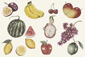 Illustration of tropical fruits