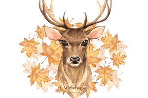 Noble Deer. Autumn