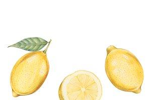 Illustration of lemon watercolor