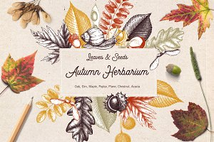 Vintage Autumn Leaves Set