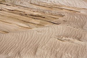 Yellow sand in the dunes