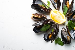 Boiled mussels close up