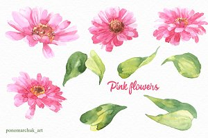 Pink flowers watercolor