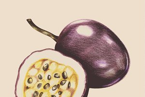 Illustration of tropical fruit