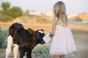 little girl in the farm