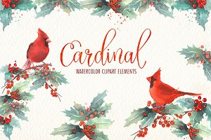 Cardinal bird watercolor clipart set