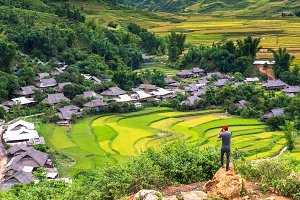 Rice fields on terraced