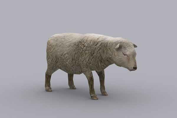 3D Animals: PROTOFACTOR  - SHEEP with Native File