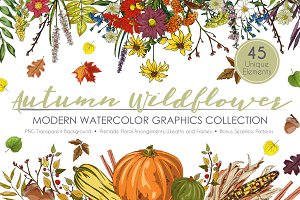 Autumn Wildflower Graphic Set