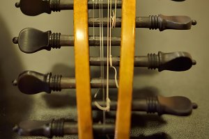 Headstock Baroque Mandolin