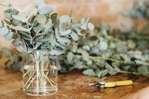 Arranging Eucalyptus Rustically