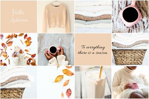 Autumn Bundle Stock Photos