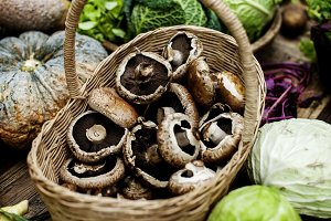 Fresh mushroom vegetable