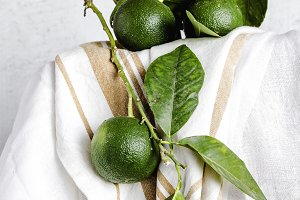 Fresh green lemons on white table