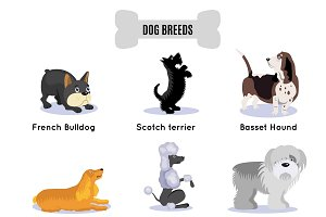 Dogs Breed Colored Icon Set