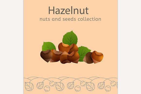 Hazelnut Image
