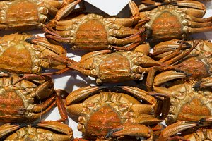 Fresh crabs in fish market