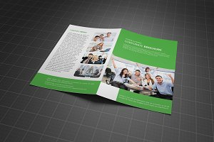 Bifold Business Brochure Vol 14