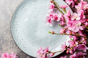 Sakura branches around gray plate, stone background. Japanese food concept. Top view, copy space