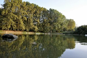 Lake of the ducks