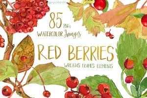 Red Berries-watercolor design set