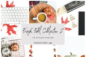 Fresh Fall Styled Photos Coll. 2